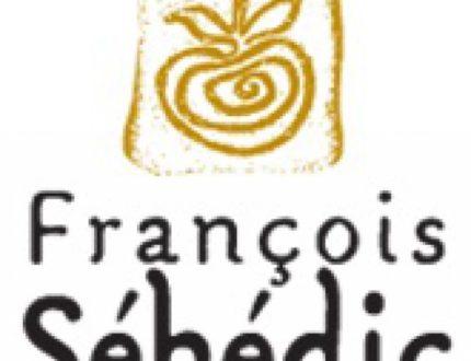 logo_sehedic