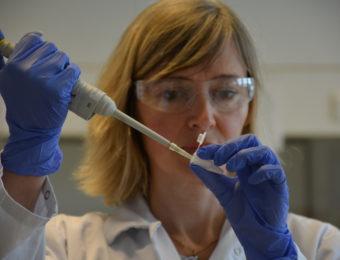 Adria : une biologiste fait une analyse
