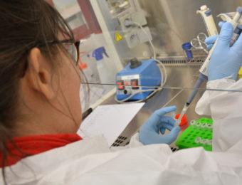 Adria_Analyse ADN_micro tube (5)
