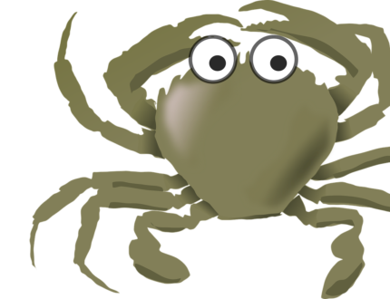 Crabe_vert_Pixabay_OpenClipart_Vectors